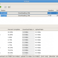 Deluge-Downloads