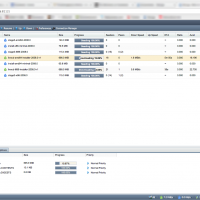 Deluge-Windows-Web-UI