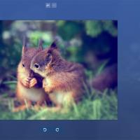 Fotor-For-Windows-10