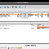 qBittorrent-Windows8