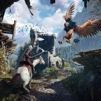The-Witcher-3-Bird-Attack