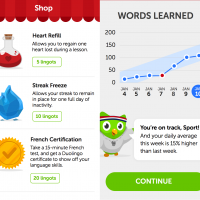 Duolingo-Lessons-Learned