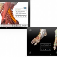 Download-Essential-Anatomy-Windows