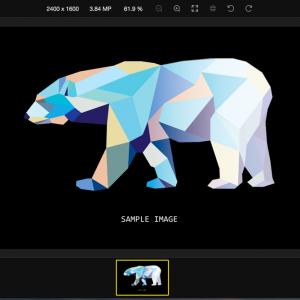 Polarr photo editor preview