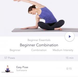 Yoga studio beginner class