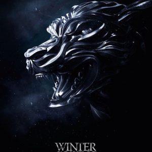 Iphone wallpaper winter is coming