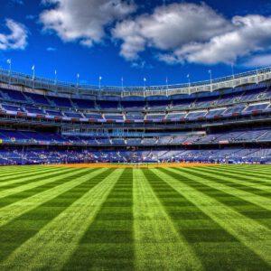 Empty ny stadium