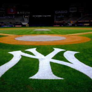 New york yankees stadium logo