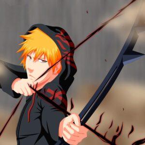 Ichigo quincy arrow