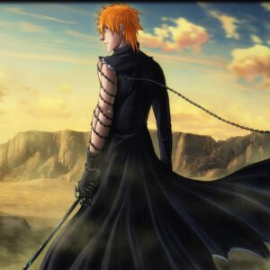 Ichigo chain sword
