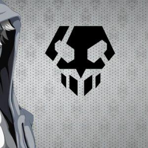 Ichigo hoody wallpaper