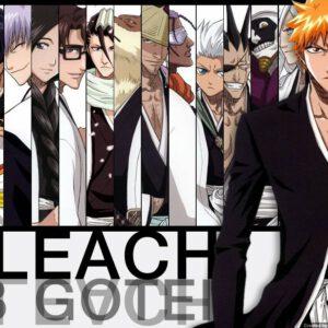 Ichigo with captains