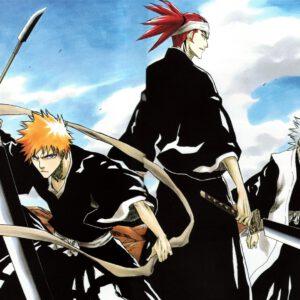 Ichigo with some captains