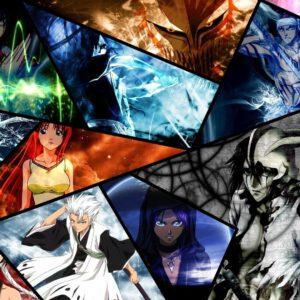 Many bleach characters